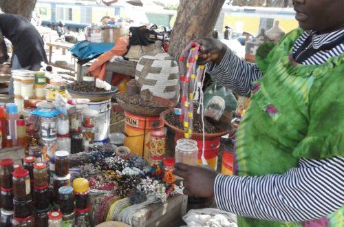 Article : Au pays des Dakaroises…